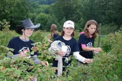letnji-kamp-na-zlatiboru-2009 0