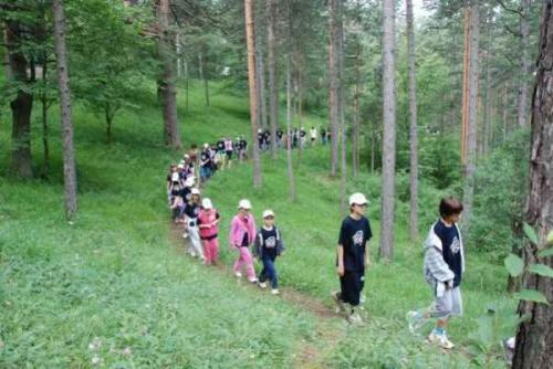 letnji-kamp-na-zlatiboru-2009 6