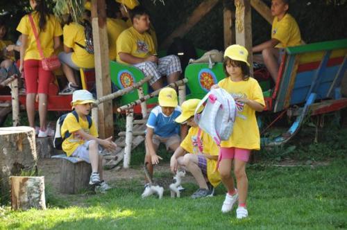 letnji-kamp-na-zlatiboru-2012 0