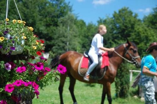english-summer-camp-zlatibor-2015 34