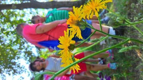 english-summer-camp-zlatibor-2015 56