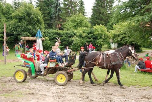 letnji-kamp-na-zlatiboru-2010 4
